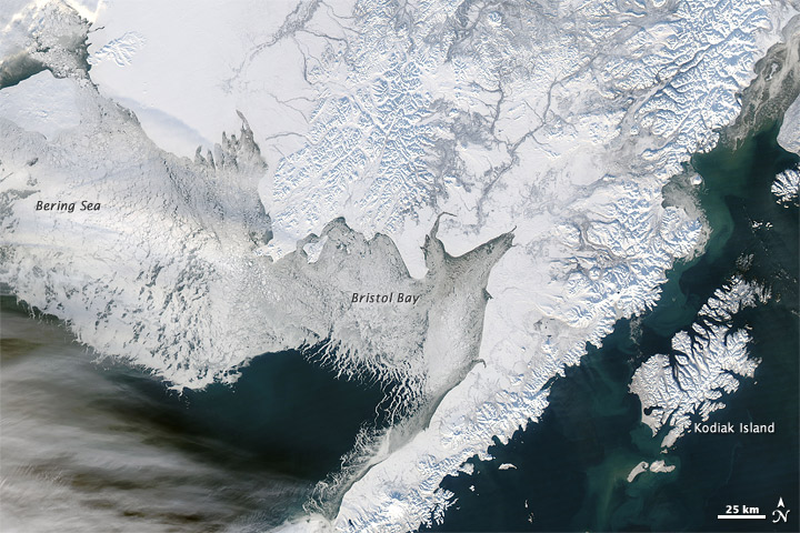Sea ice image NASA-MODIS, 16 January 2012.
