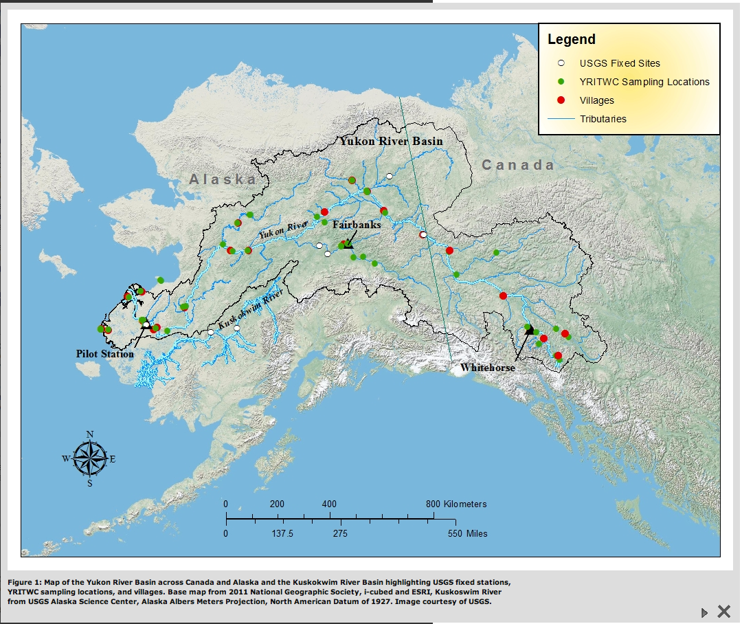 Map of the Yukon River Basin across Canada and Alaska and the Kuskokwim River Basin highlighting USGS fixed stations, YRITWC sampling locations, and villages. Base map from 2011 National Geographic Society, i-cubed and ESRI, Kuskoswim River from USGS Alaska Science Center, Alaska Albers Meters Projection, North American Datum of 1927. Image courtesy of USGS.